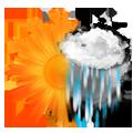 AM Sun & PM Rain